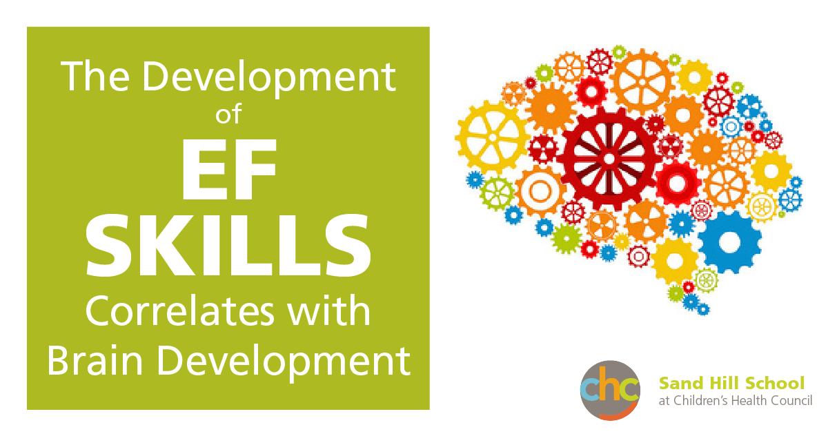 The development of Executive Functioning skills correlates with brain development